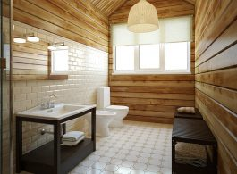 5 Things to Consider Before a Bathroom Renovation